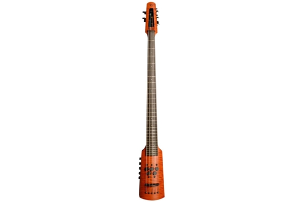 NS Design - CR5 Omni Bass 5 corde Fretted