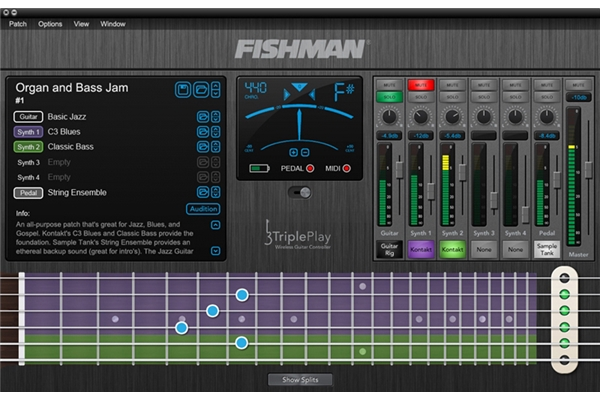 Fishman - Triple Play PRO-TRP-301