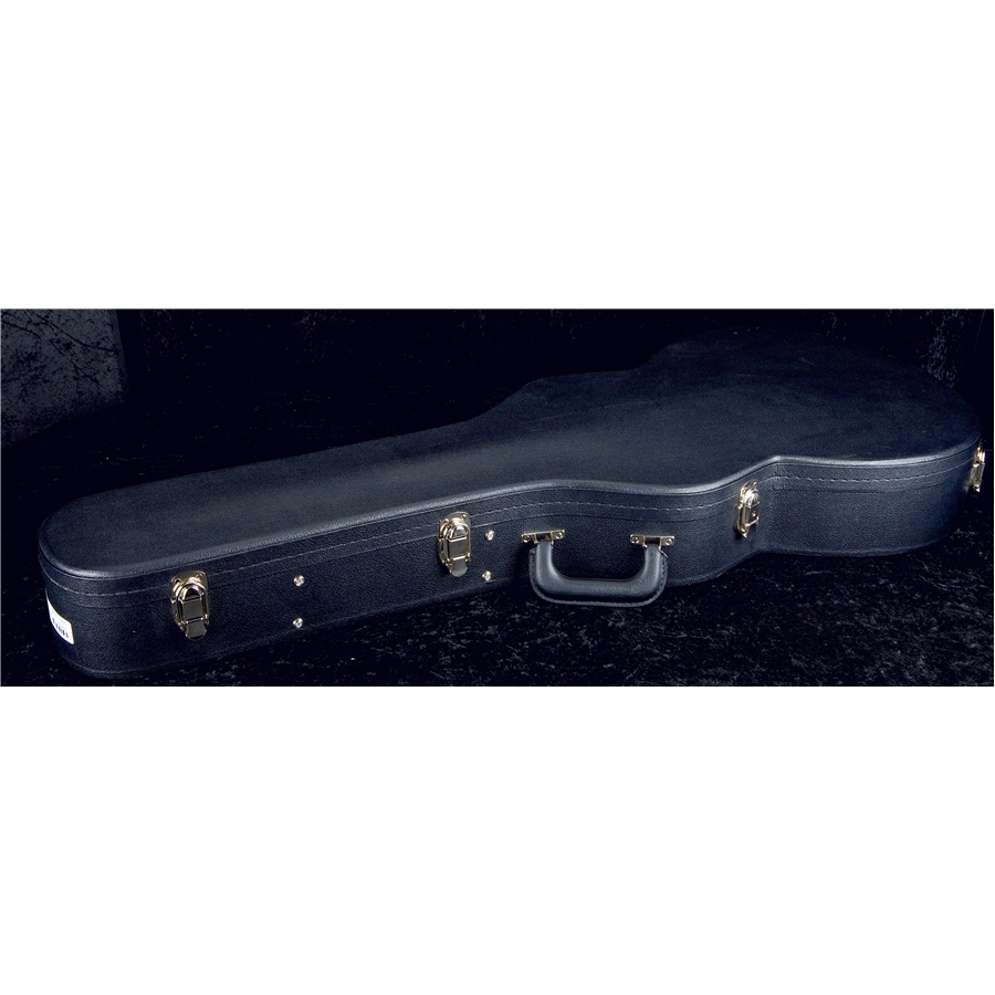 ACC-4226 Hollowbody Case
