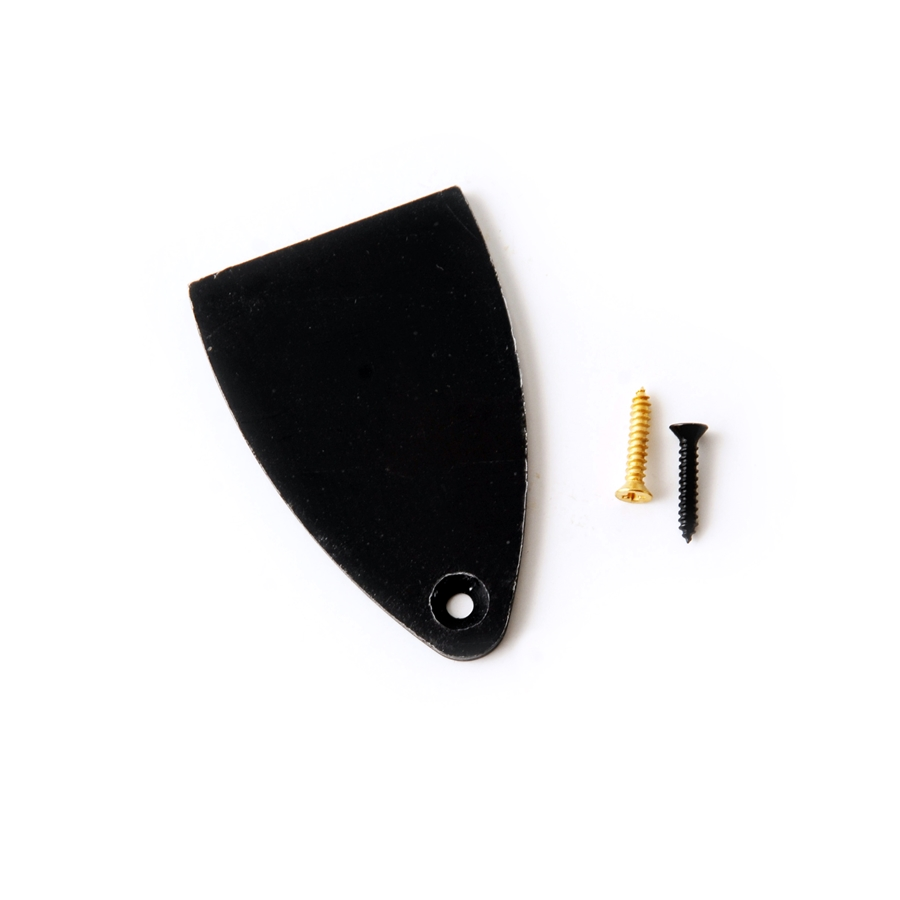 ACC-4300 Truss Rod Cover & Screws