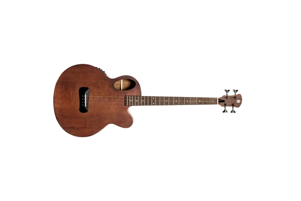 Spector - Timbre Jr. Short Scale Walnut Stain Matte
