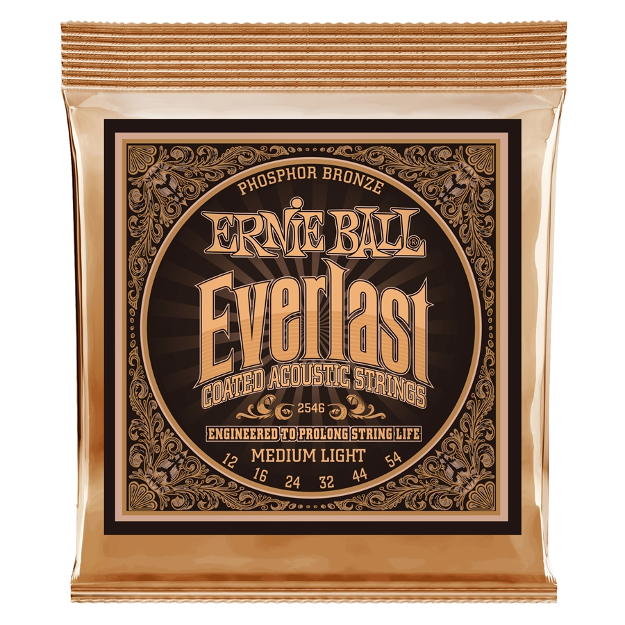 2546 Everlast Coated Phosphor Bronze Medium Light 12-54