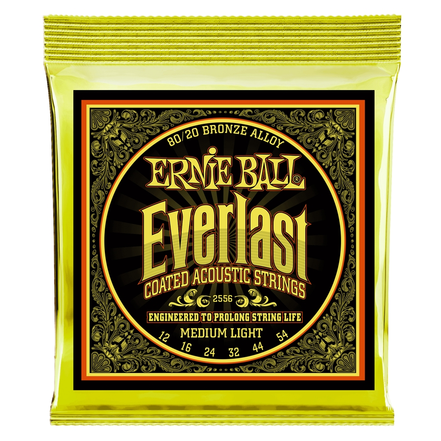 2556 Everlast Coated 80/20 Bronze Medium Light 12-54