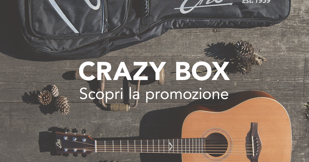 crazybox_ekoguitars