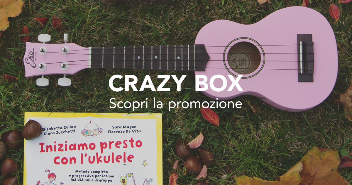 ekoguitars_crazybox