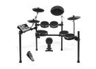 Alesis Dm10 studio kit-mesh